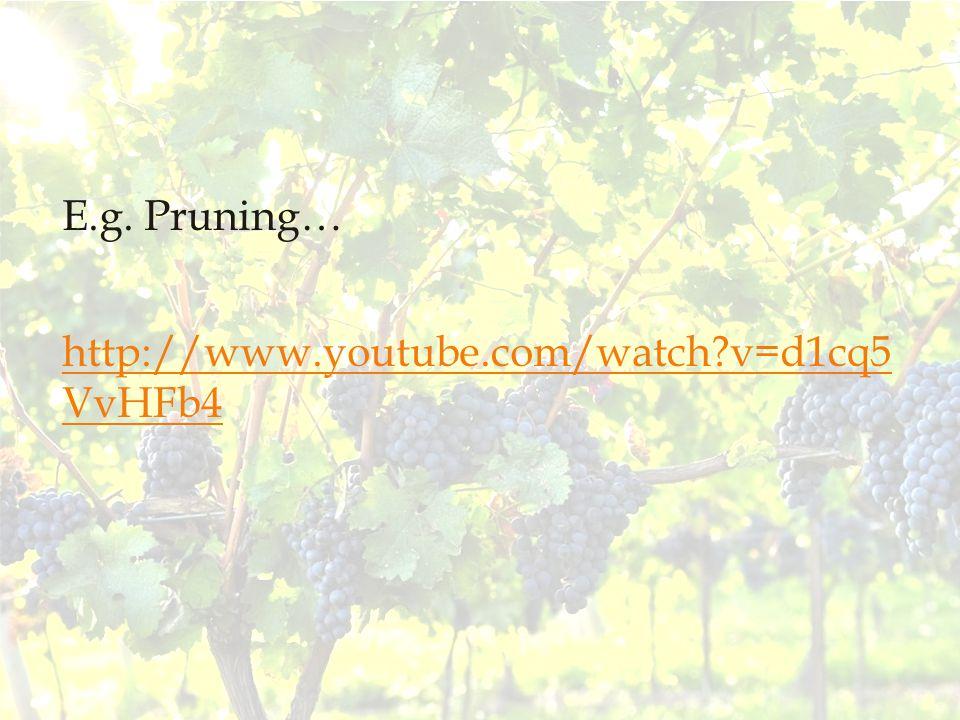 E.g. Pruning… http://www.youtube.com/watch v=d1cq5 VvHFb4