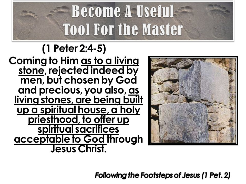 (1 Peter 2:4-5) Coming to Him as to a living stone, rejected indeed by men, but chosen by God and precious, you also, as living stones, are being built up a spiritual house, a holy priesthood, to offer up spiritual sacrifices acceptable to God through Jesus Christ.