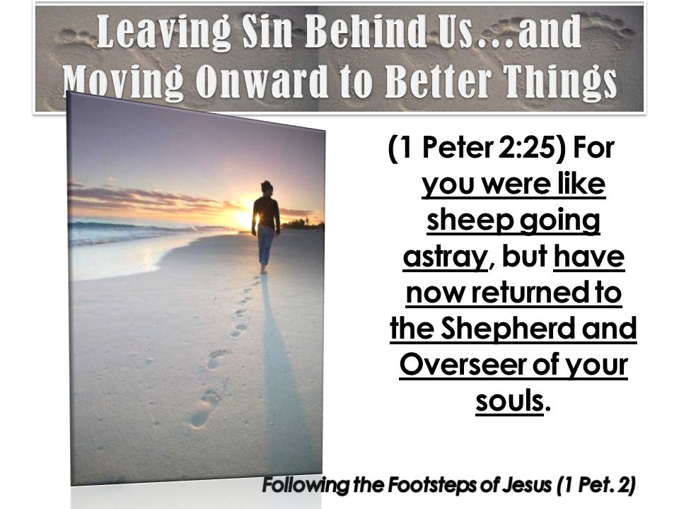 (1 Peter 2:25) For you were like sheep going astray, but have now returned to the Shepherd and Overseer of your souls.