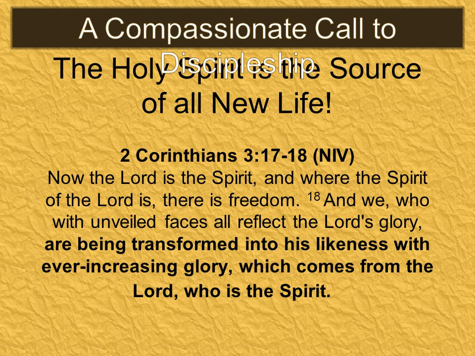 The Holy Spirit is the Source of all New Life! 2 Corinthians 3:17-18 (NIV) Now the Lord is the Spirit, and where the Spirit of the Lord is, there is f