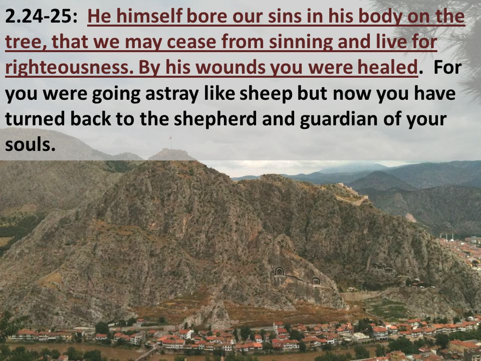 2.24-25: He himself bore our sins in his body on the tree, that we may cease from sinning and live for righteousness.