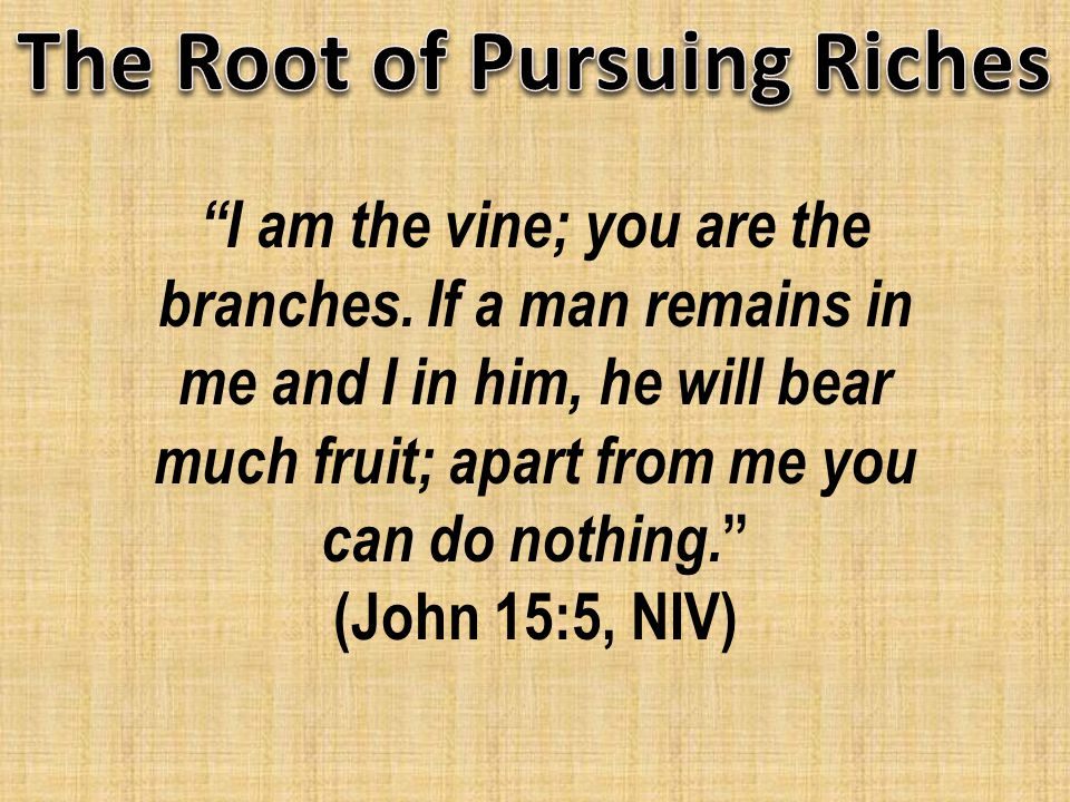 I am the vine; you are the branches.