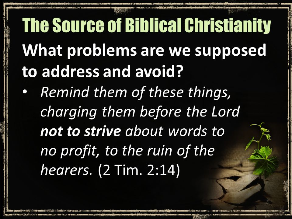 What problems are we supposed to address and avoid? Remind them of these things, charging them before the Lord not to strive about words to no profit,