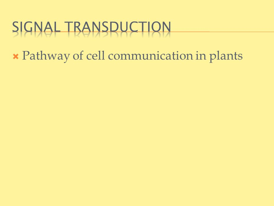  Pathway of cell communication in plants