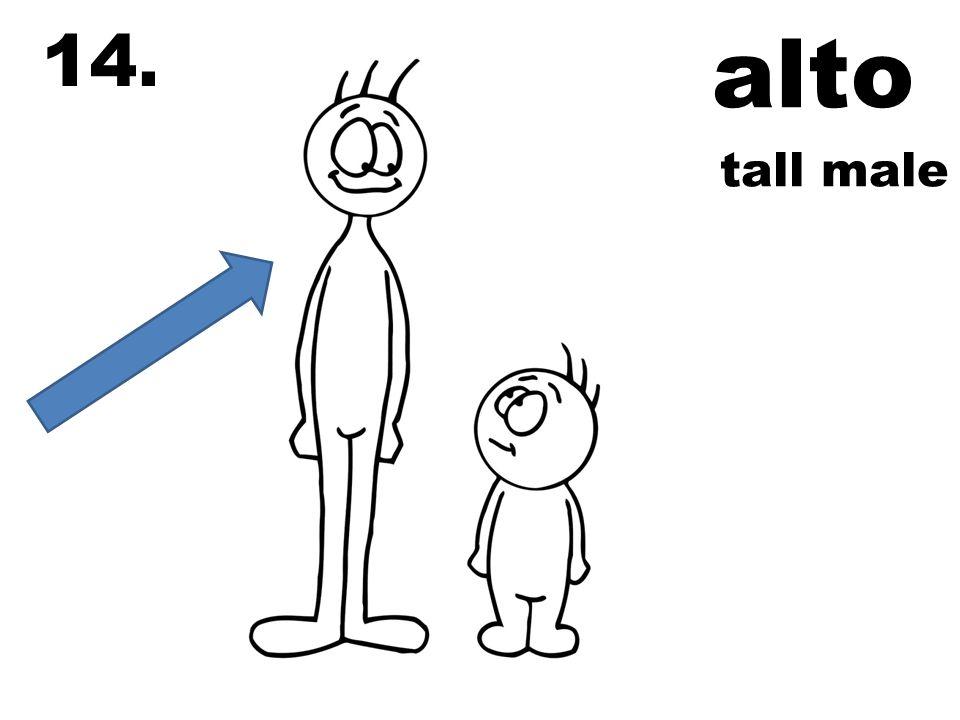 alto 14. tall male