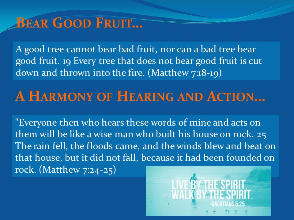 A good tree cannot bear bad fruit, nor can a bad tree bear good fruit.