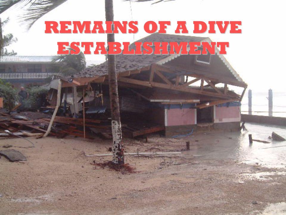 REMAINS OF A DIVE ESTABLISHMENT