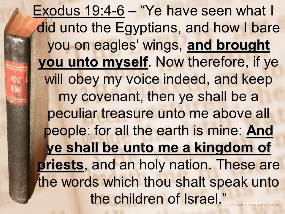 and brought you unto myself And ye shall be unto me a kingdom of priests Exodus 19:4-6 – Ye have seen what I did unto the Egyptians, and how I bare you on eagles wings, and brought you unto myself.