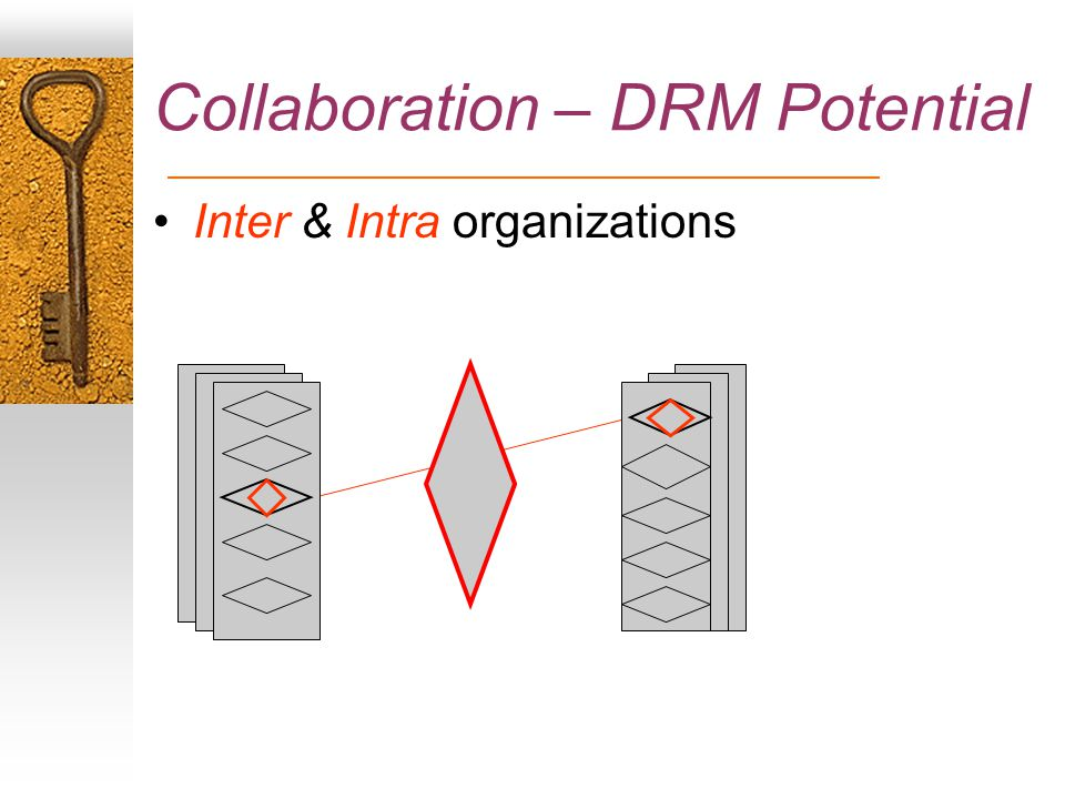 Collaboration – DRM Potential Inter & Intra organizations