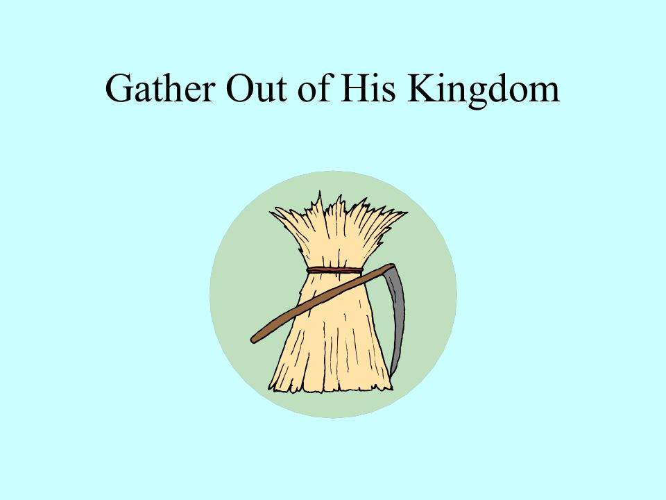 At the 'End of the Age' there will be 'Things that offend' and 'Practice of sin', 'In the Kingdom' 'Tares of the World' can influence the 'Wheat of the Kingdom' Collect out = origin-the point whence motion or action proceeds When God is ready Matthew 13:27-29