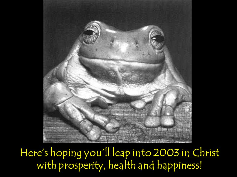 Here's hoping you'll leap into 2003 in Christ with prosperity, health and happiness!