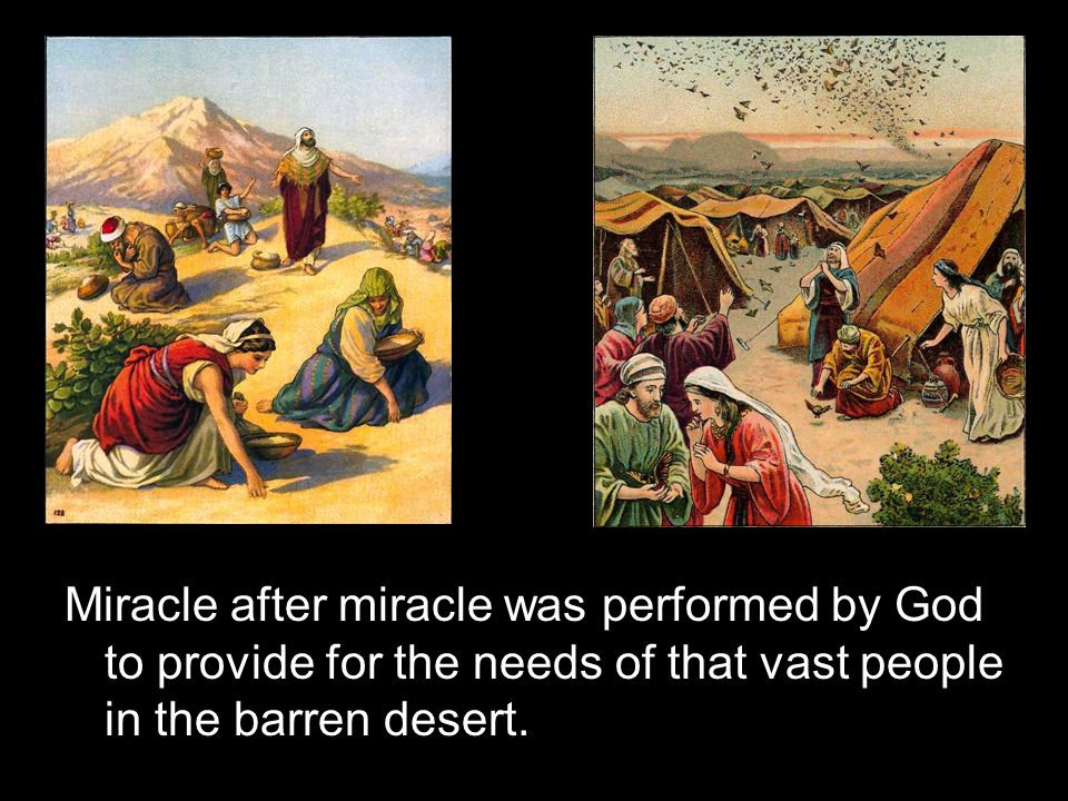 Miracle after miracle was performed by God to provide for the needs of that vast people in the barren desert.