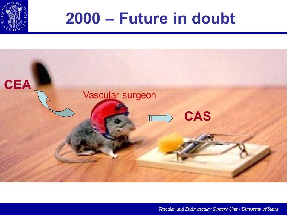 Vascular and Endovascular Surgery Unit - University of Siena Vascular surgeon CAS CEA 2000 – Future in doubt Which was the future for a Vascular Surgeon