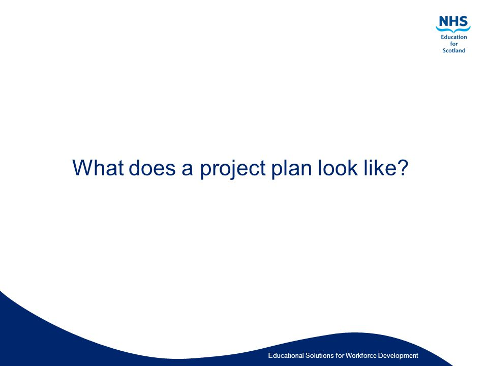 Educational Solutions for Workforce Development What does a project plan look like?