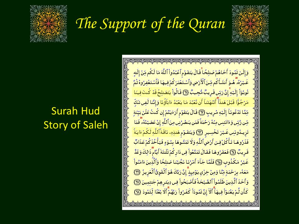Surah Hud Story of Saleh The Support of the Quran