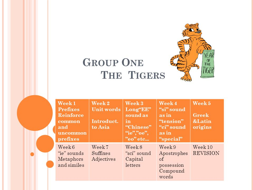 G ROUP O NE T HE T IGERS Week 1 Prefixes Reinforce common and uncommon prefixes Week 2 Unit words Introduct.