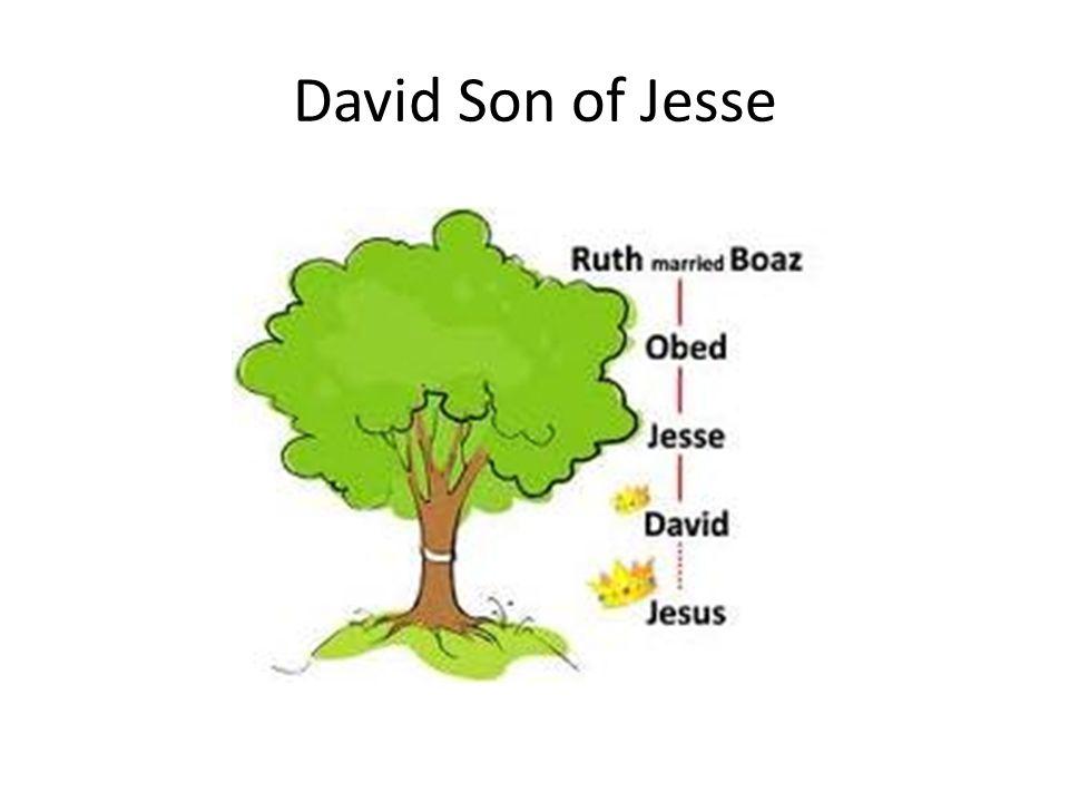 David Son of Jesse