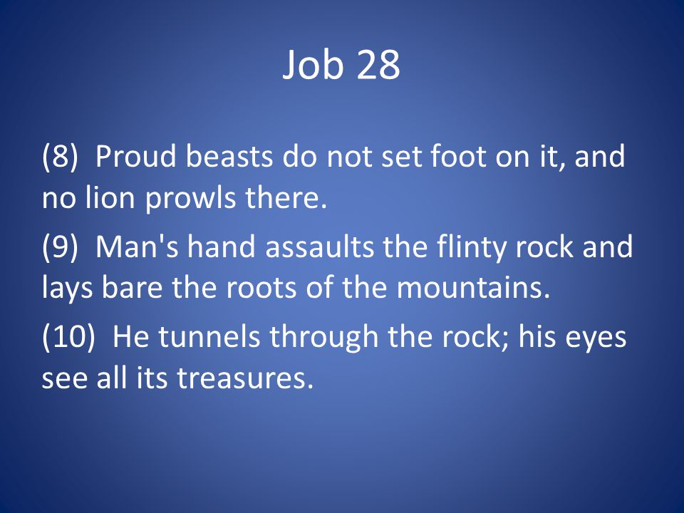 Job 28 (8) Proud beasts do not set foot on it, and no lion prowls there.