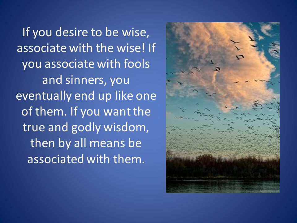 If you desire to be wise, associate with the wise.