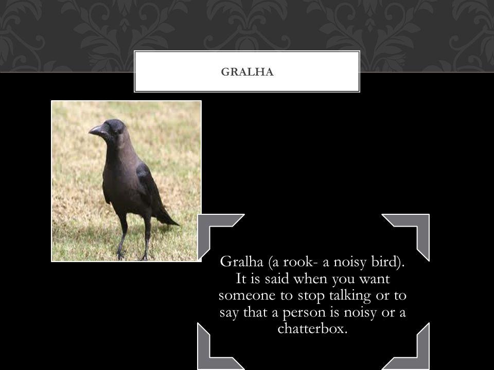 GRALHA Gralha (a rook- a noisy bird).
