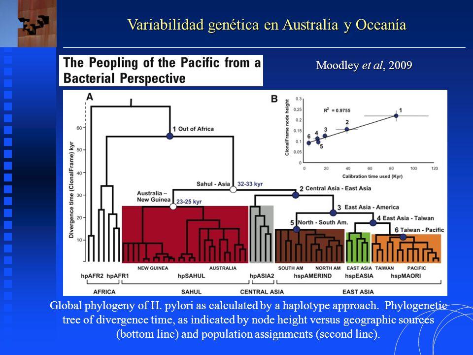 Variabilidad genética en Australia y Oceanía Moodley et al, 2009 Global phylogeny of H.