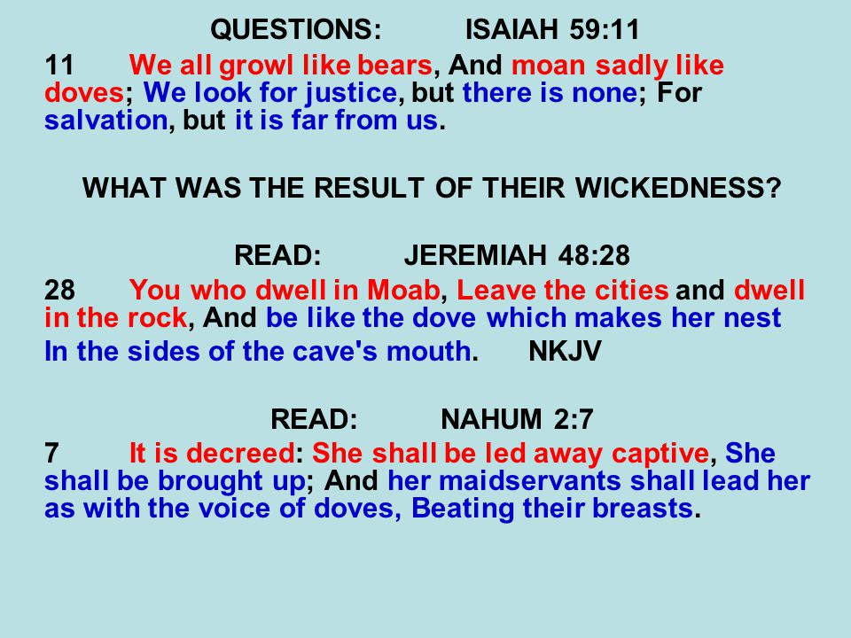 QUESTIONS:ISAIAH 59:11 11We all growl like bears, And moan sadly like doves; We look for justice, but there is none; For salvation, but it is far from