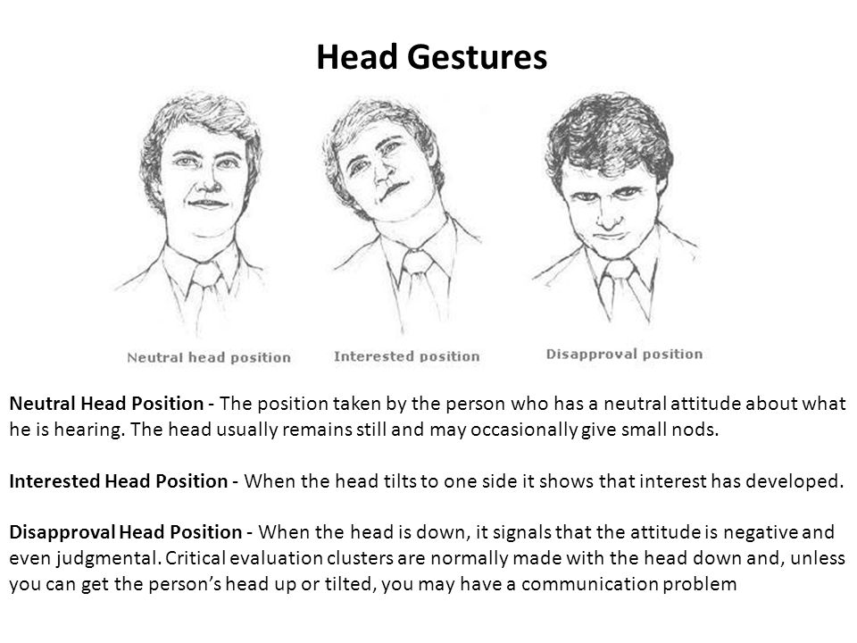 Head Gestures Neutral Head Position - The position taken by the person who has a neutral attitude about what he is hearing.