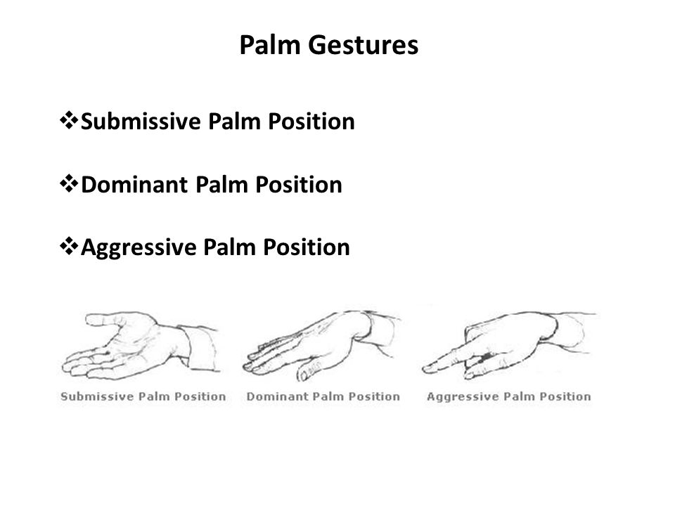 Palm Gestures  Submissive Palm Position  Dominant Palm Position  Aggressive Palm Position