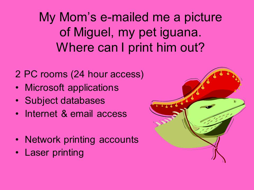 My Mom's e-mailed me a picture of Miguel, my pet iguana. Where can I print him out? 2 PC rooms (24 hour access) Microsoft applications Subject databas