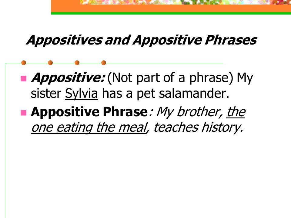 appositive phrase An appositive phrase contains an appositive noun that provides information about the preceding noun.