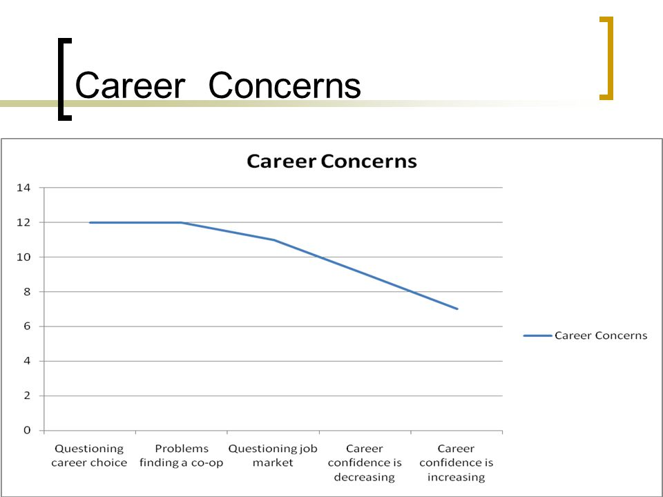 Career Concerns