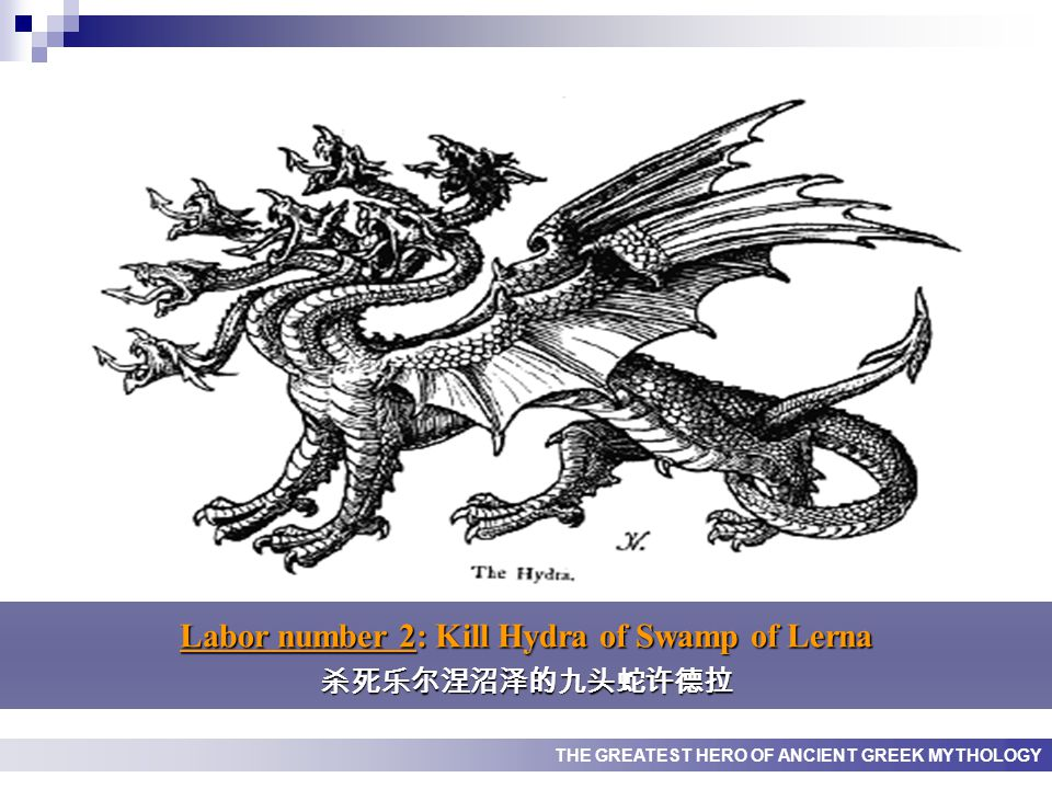 THE GREATEST HERO OF ANCIENT GREEK MYTHOLOGY Labor number 2: Kill Hydra of Swamp of Lerna 杀死乐尔涅沼泽的九头蛇许德拉