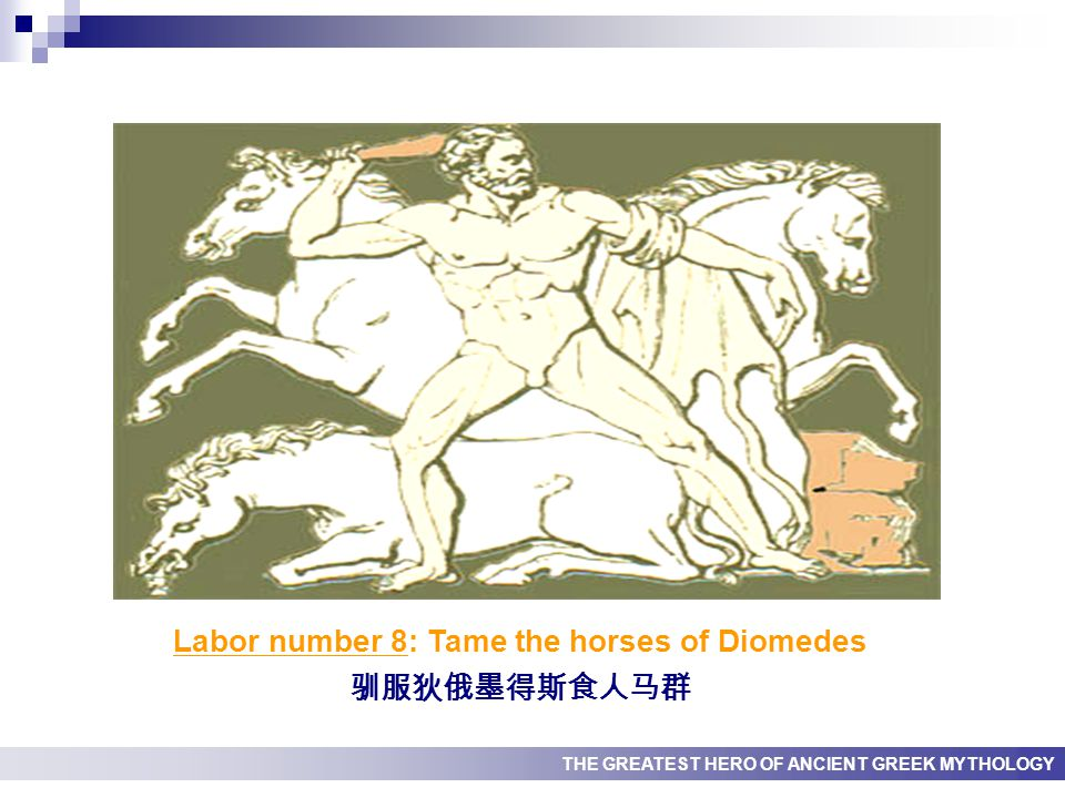 THE GREATEST HERO OF ANCIENT GREEK MYTHOLOGY Labor number 8: Tame the horses of Diomedes 驯服狄俄墨得斯食人马群
