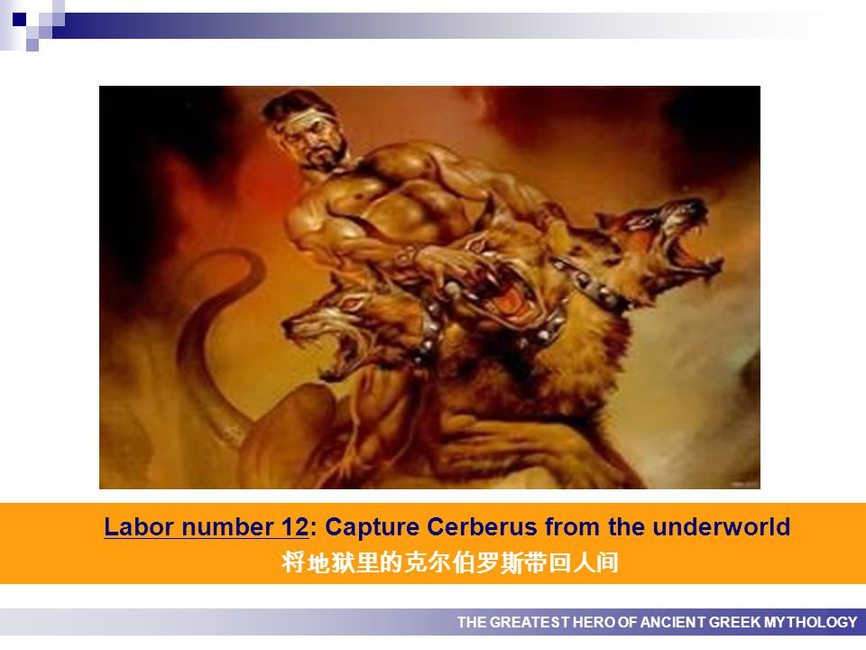 THE GREATEST HERO OF ANCIENT GREEK MYTHOLOGY Labor number 12: Capture Cerberus from the underworld 将地狱里的克尔伯罗斯带回人间