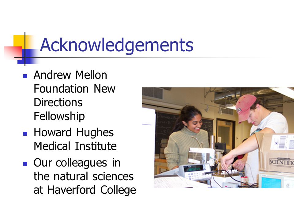 Acknowledgements Andrew Mellon Foundation New Directions Fellowship Howard Hughes Medical Institute Our colleagues in the natural sciences at Haverford College