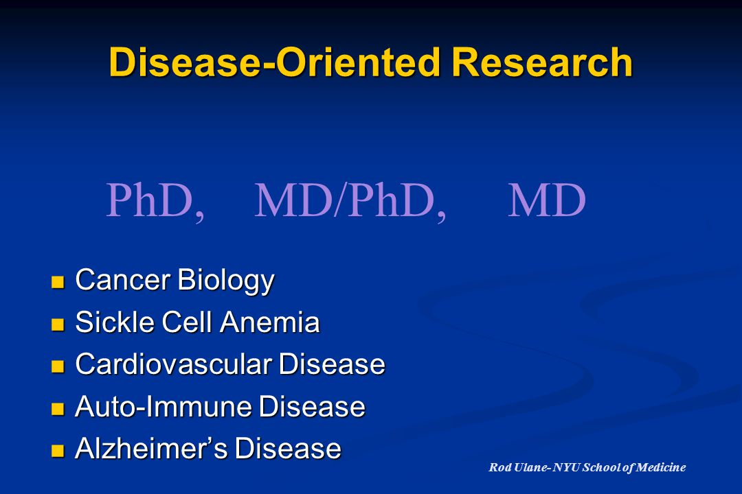 Disease-Oriented Research Cancer Biology Cancer Biology Sickle Cell Anemia Sickle Cell Anemia Cardiovascular Disease Cardiovascular Disease Auto-Immune Disease Auto-Immune Disease Alzheimer's Disease Alzheimer's Disease PhD,MD/PhD,MD Rod Ulane- NYU School of Medicine