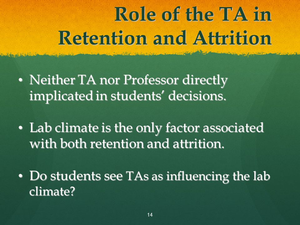 Role of the TA in Retention and Attrition Neither TA nor Professor directly implicated in students' decisions.