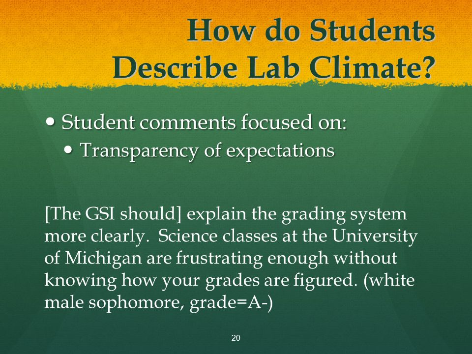 Student comments focused on: Student comments focused on: Transparency of expectations Transparency of expectations [The GSI should] explain the grading system more clearly.
