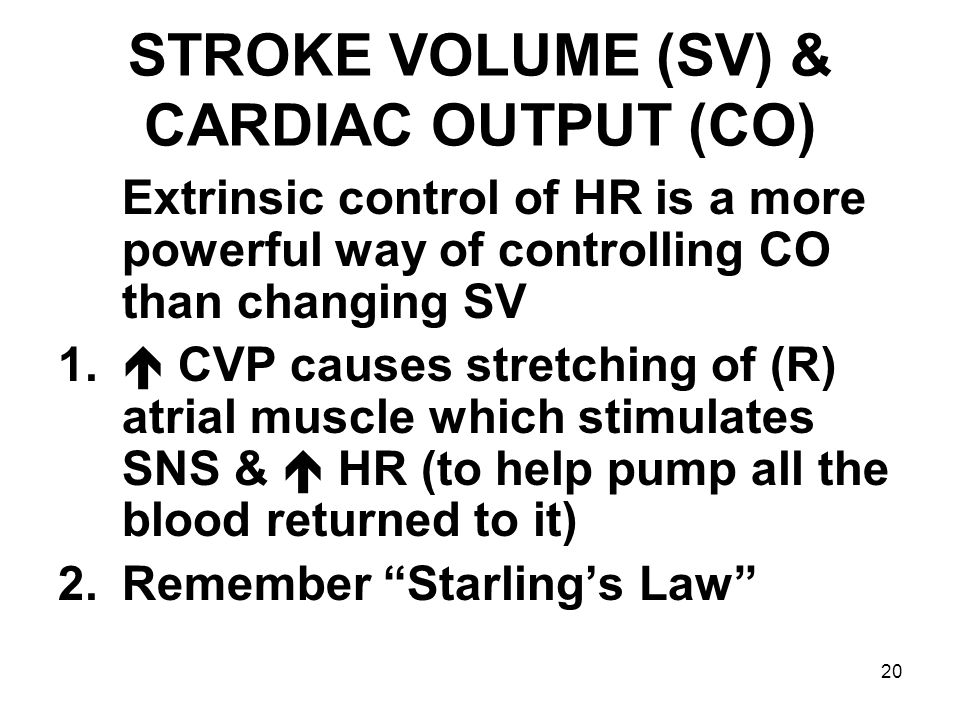 20 STROKE VOLUME (SV) & CARDIAC OUTPUT (CO) Extrinsic control of HR is a more powerful way of controlling CO than changing SV 1.  CVP causes stretchi