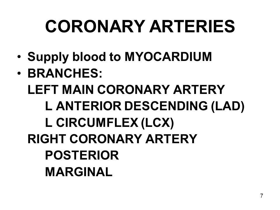 7 CORONARY ARTERIES Supply blood to MYOCARDIUM BRANCHES: LEFT MAIN CORONARY ARTERY L ANTERIOR DESCENDING (LAD) L CIRCUMFLEX (LCX) RIGHT CORONARY ARTER