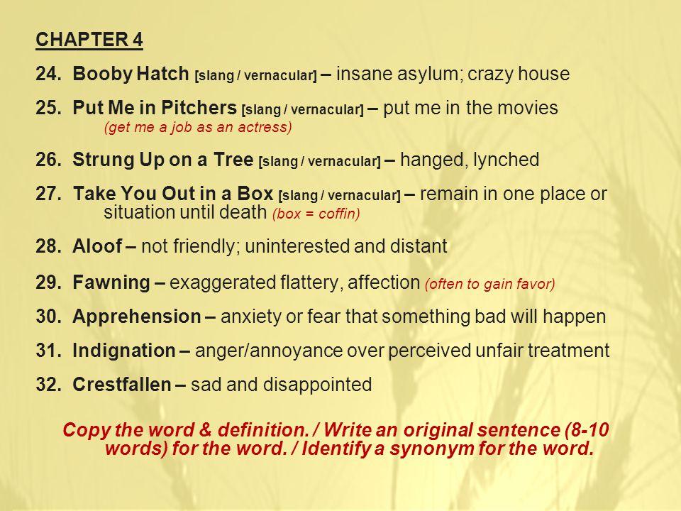 CHAPTER 4 24. Booby Hatch [slang / vernacular] – insane asylum; crazy house 25.