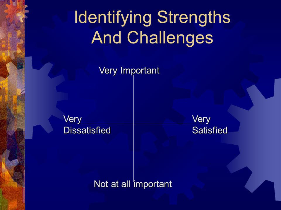 Identifying Strengths And Challenges Not at all important Very Important VeryDissatisfiedVerySatisfied