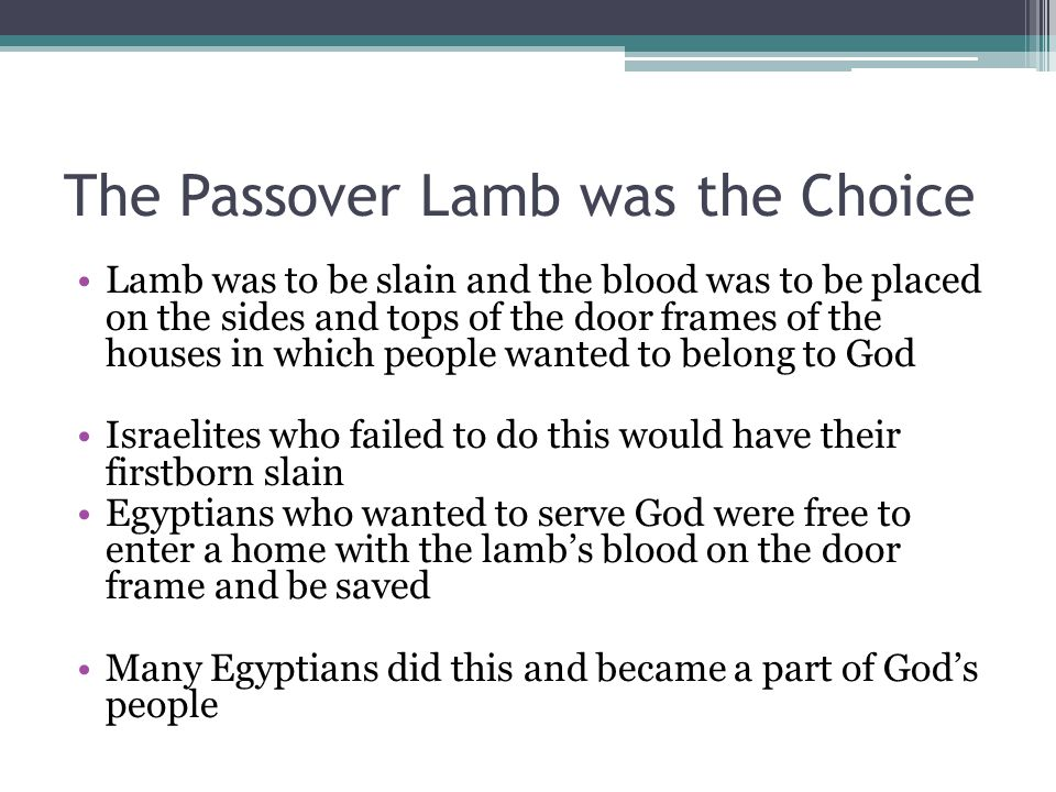 The Passover Lamb was the Choice Lamb was to be slain and the blood was to be placed on the sides and tops of the door frames of the houses in which people wanted to belong to God Israelites who failed to do this would have their firstborn slain Egyptians who wanted to serve God were free to enter a home with the lamb's blood on the door frame and be saved Many Egyptians did this and became a part of God's people