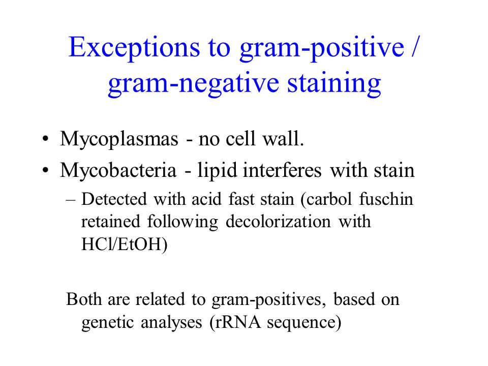 Exceptions to gram-positive / gram-negative staining Mycoplasmas - no cell wall.