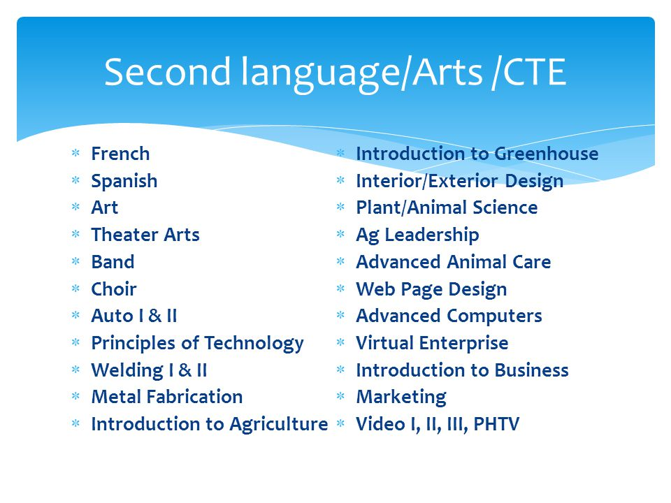  French  Spanish  Art  Theater Arts  Band  Choir  Auto I & II  Principles of Technology  Welding I & II  Metal Fabrication  Introduction to