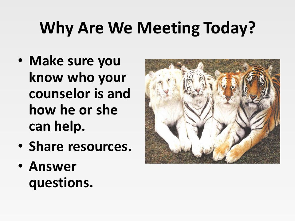 Why Are We Meeting Today? Make sure you know who your counselor is and how he or she can help. Share resources. Answer questions.