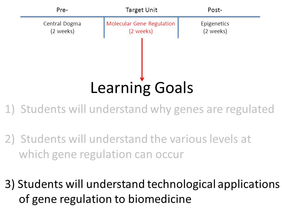 Learning Goals 1)Students will understand why genes are regulated 2)Students will understand the various levels at which gene regulation can occur 3) Students will understand technological applications of gene regulation to biomedicine Molecular Gene Regulation (2 weeks) Pre-Post- Central Dogma (2 weeks) Epigenetics (2 weeks) Target Unit