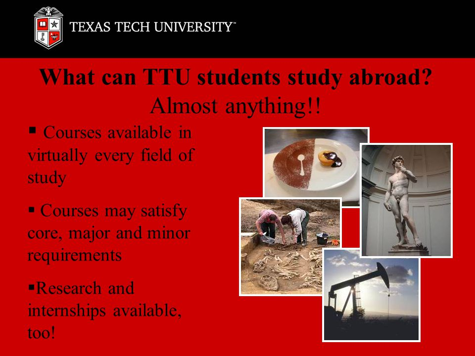 What can TTU students study abroad. Almost anything!.
