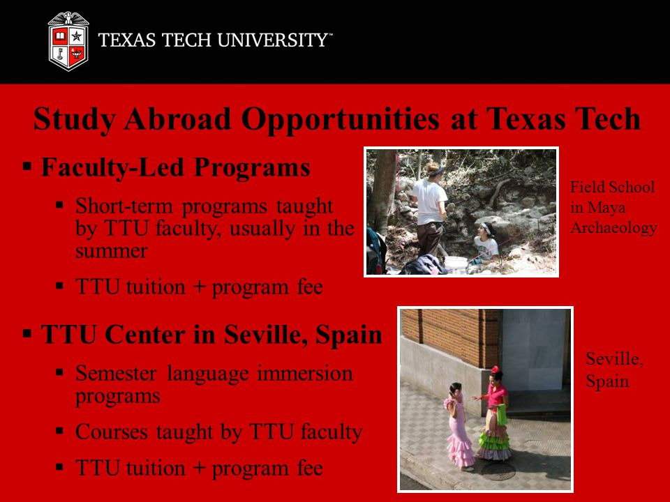 Affiliated & Reciprocal Exchange Programs  Programs in more than 80 countries with courses in every discipline  Fellow students not necessarily from TTU  Reciprocal Exchanges: TTU tuition and fees paid, no additional program fee  Semester and year-long programs  Affiliated Programs: costs paid directly to provider  Summer, semester and year-long programs