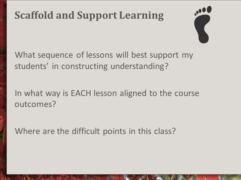 Scaffold and Support Learning What sequence of lessons will best support my students' in constructing understanding.
